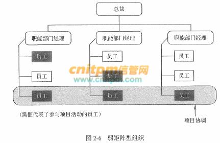 信息系统项目管理师教程第3版:组织结构